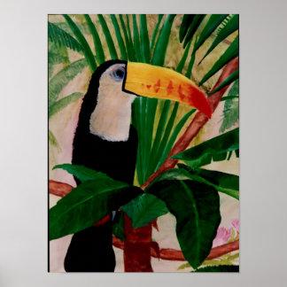 Arte suramericano del pájaro de la selva del pájar posters