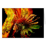Arte tropical de la foto del Lionfish Tarjetas