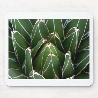 Arte verde del agavo tapetes de ratón