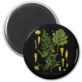 Artemesia Absinthium 2 Inch Round Magnet