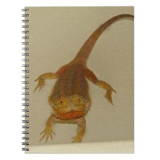 Artemis el dragón barbudo spiral notebooks