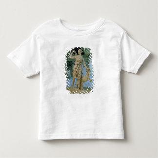 Artemis el Huntress, conocido como la 'Diana de T-shirt