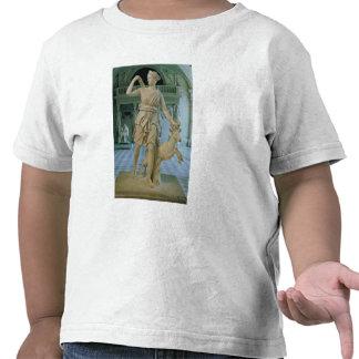 Artemis el Huntress, conocido como la 'Diana de Camiseta