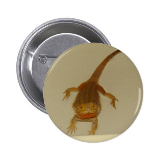 Artemis The Bearded Dragon 2 Inch Round Button