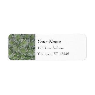 Artemisia Label