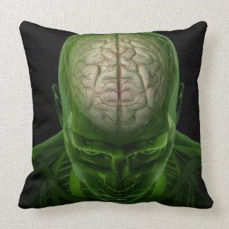Arterias del cerebro almohadas
