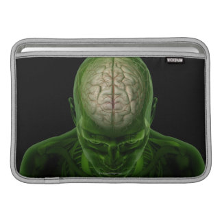 Arterias del cerebro fundas para macbook air
