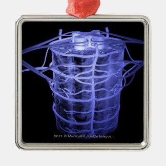 Arterias que rodean la parte de la columna espinal adorno cuadrado plateado