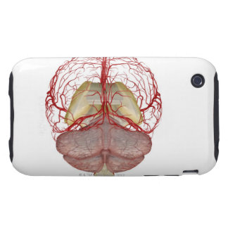 Arteries of the Brain 2 Tough iPhone 3 Cases