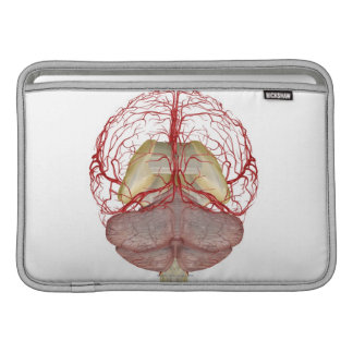 Arteries of the Brain 2 MacBook Air Sleeves