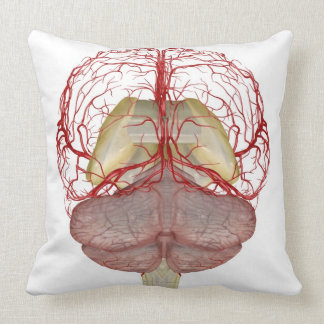 Arteries of the Brain 2 Throw Pillows
