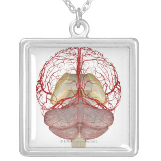 Arteries of the Brain 2 Silver Plated Necklace