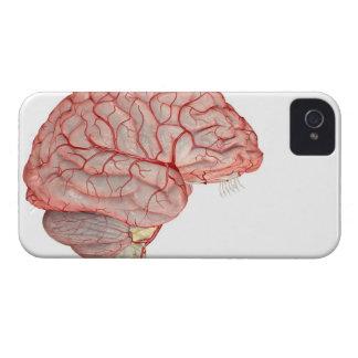 Arteries of the Brain iPhone 4 Case-Mate Case