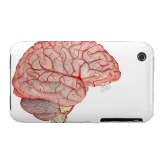 Arteries of the Brain iPhone 3 Covers