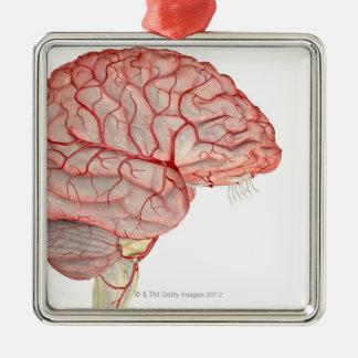 Arteries of the Brain Metal Ornament