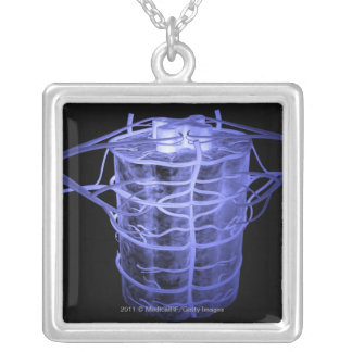 Arteries surrounding part of the spinal column silver plated necklace