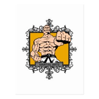 Artes marciales agresivos postal