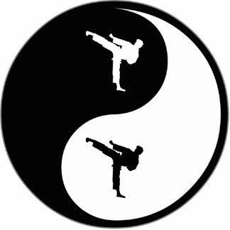 Artes marciales de Yin Yang Escultura Fotografica