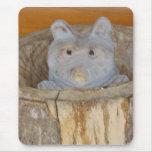 artesanía en madera del mapache alfombrillas de ratones