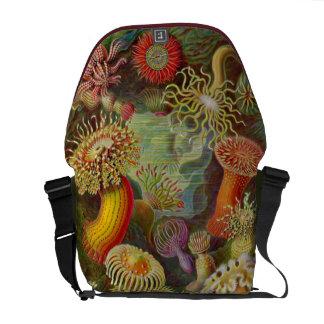 Artforms de la naturaleza 49 bolsas de mensajería