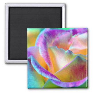 Artful Colorful Rose Square Magnet Refrigerator Magnet