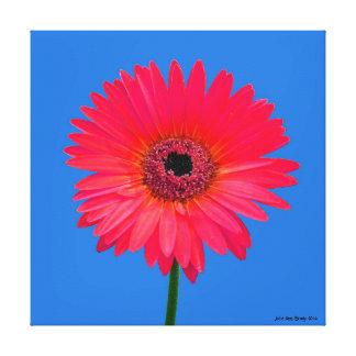 Artful Gerbera Daisy Canvas Print