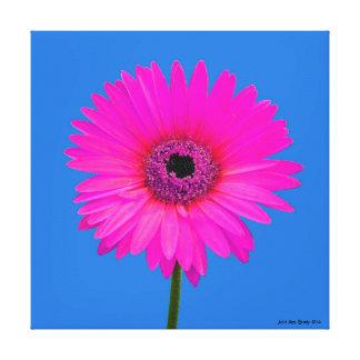 Artful Gerbera Daisy Gallery Wrap Canvas