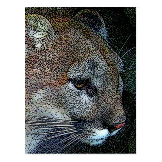 Artful Nature Cougar Postcard