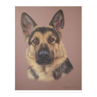 Arthur - German Shepherd Postcard