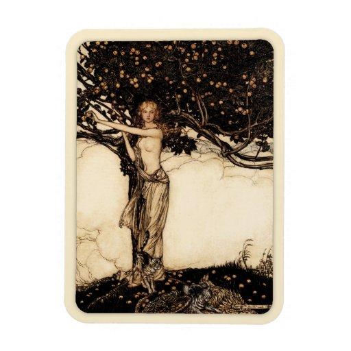 Arthur Rackham Freya CC0543 Fridge Art Collection