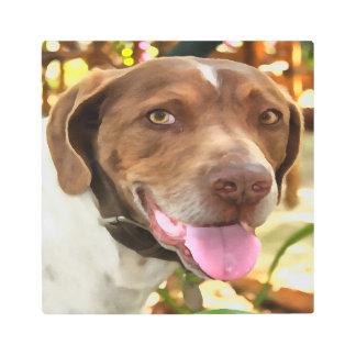 Arthur The Hunting Dog Metal Photo Print
