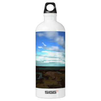 Artic view aluminum water bottle