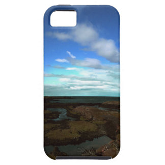 Artic view iPhone 5 covers