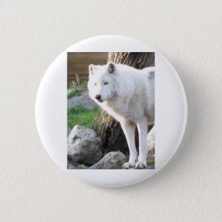 ARTIC WOLF BUTTON