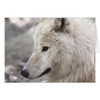 Artic Wolf Lovers Card