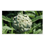 Artichoke and Leaves. Double-Sided Standard Business Cards (Pack Of 100)