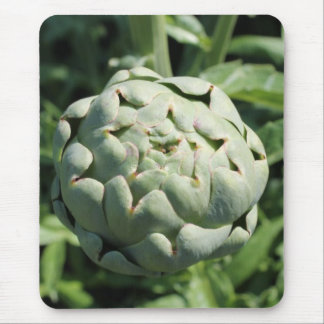 Artichoke and Leaves. Mouse Pad