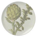 Artichoke: Cynara scolymus, c.1568 Dinner Plate