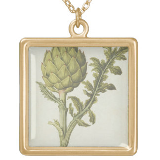 Artichoke: Cynara scolymus, c.1568 Gold Plated Necklace