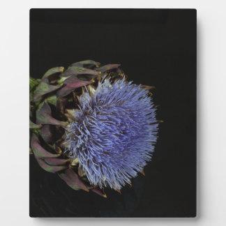 Artichoke flower plaque