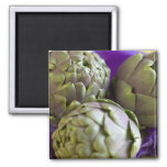 Artichokes For use in USA only.) 2 2 Inch Square Magnet