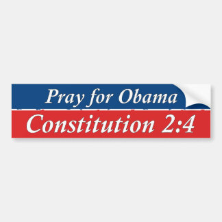 Article 2 Section 4 Bumper Sticker