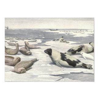 Ártico de la nieve de las focas de Groenlandia de Comunicado Personalizado