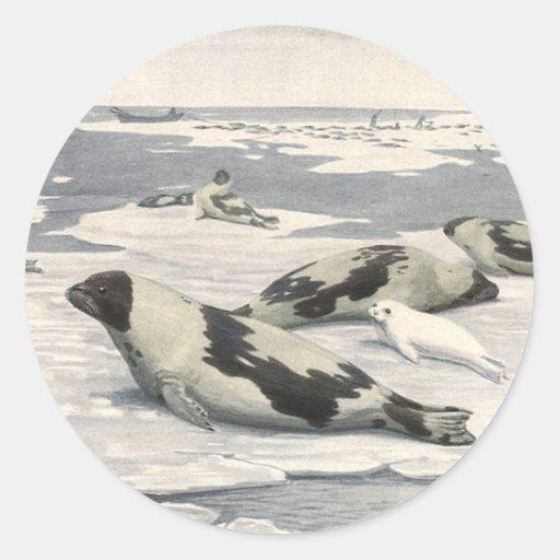 Ártico de la nieve de las focas de Groenlandia de Etiquetas Redondas