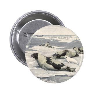 Ártico de la nieve de las focas de Groenlandia de  Pins