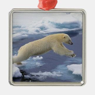 Ártico Svalbard oso polar que extiende y Ornamento Para Arbol De Navidad