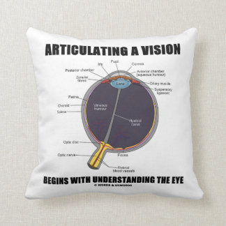 Articulating A Vision Begins Understanding The Eye Throw Pillow