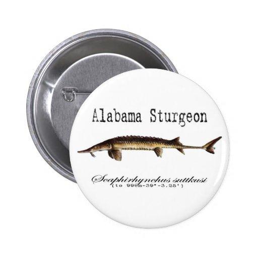 Artículo del esturión de Alabama Pins