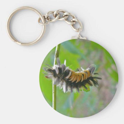 Artículos de Caterpillar de la polilla de mechón d Llavero Redondo Tipo Pin