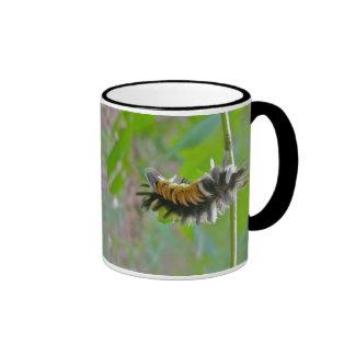Artículos de Caterpillar de la polilla de mechón d Taza A Dos Colores